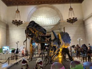 恐竜 ダイナソー
