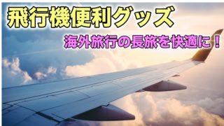 飛行機 便利グッズ 長旅 海外旅行